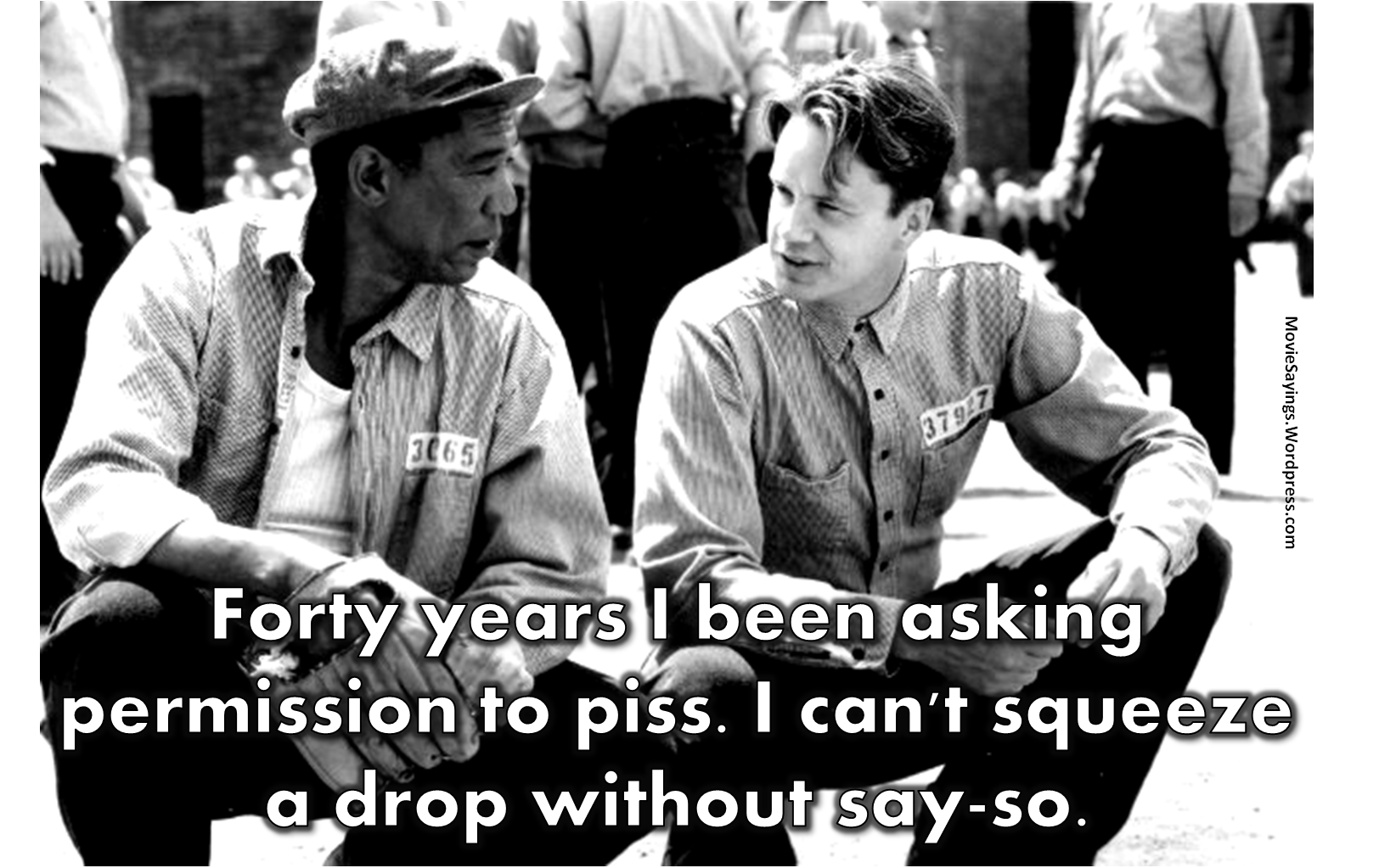 """shawshank redemption reds redemption In ellis """"red"""" boyd's third and final parole hearing, he finally says what the parole board was hoping to hear, and is granted release more than 40 years after he was first admitted."""
